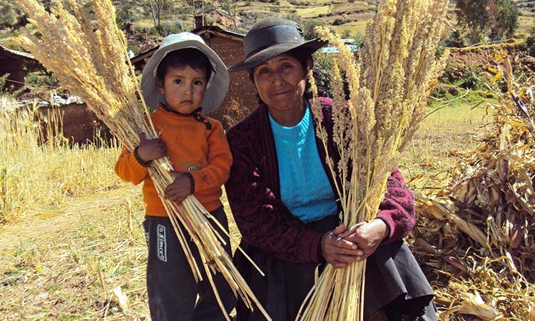 Agricultura ancestral