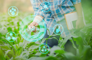 Robótica, inteligencia artificial y big data, el futuro sustentable del agro