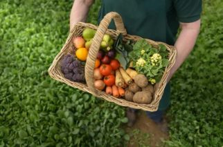Farmer carrying organic vegetables in basket for delivery, close up --- Image by © Monty Rakusen/Image Source/Corbis