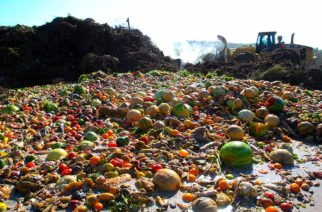 Food waste from Cedar Rapids and Marion Wal-Mart and Sam's Club stores will be worked into yard waste and composted at the Solid Waste Agency's compost site at the Site 1 landfill on Thursday, Sept. 8, 2011, in Cedar Rapids. (Liz Martin/SourceMedia Group News)